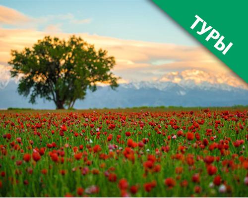 Алматы – горный мегаполис