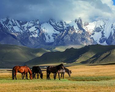 7 жемчужин Казахстана